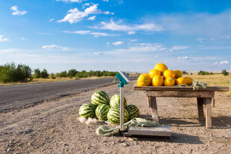 melons and watermelons for sale along the road.