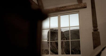 A scene of a huge dinosaur watching through the windows. 3D illustration. 스톡 콘텐츠