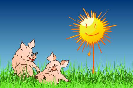 The Hog Summer Stock Vector - 15273763