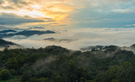 hua: Doi Hua Mod,Umphang Wildlife Sanctuary,Umphang district,Tak Province, Thailand
