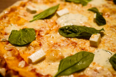 Three cheese thin crust freshly baked pizza with basil leaves on top on a wooden table close-up shot. Standard-Bild