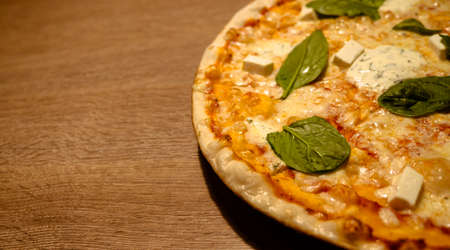 Three cheese thin crust freshly baked pizza with basil leaves on top on a wooden table close-up shot with copy space