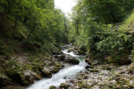 continuation: The Vintgar Gorge or Bled Gorge is a 1.6-kilometer gorge in northwestern Slovenia in the municipalities of Gorje and Bled. Carved by the Radovna River, it is the continuation of the Radovna Valley.