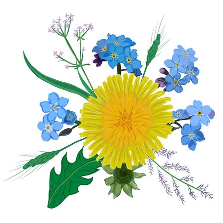 dandelion flower: Yellow dandelion flower bouquet. Hand drawn wildflowers yellow blue bouquet eps10 Illustration
