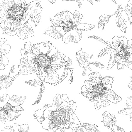 peony black: Seamless pattern green flowers peony, black on white background. Blossom peonies, monochrome. Illustration