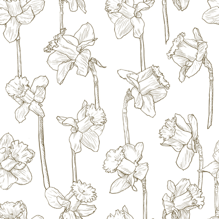 Seamless floral narcissus pattern. Line illustration for fabric wrapping prints cards wedding design in vintage style