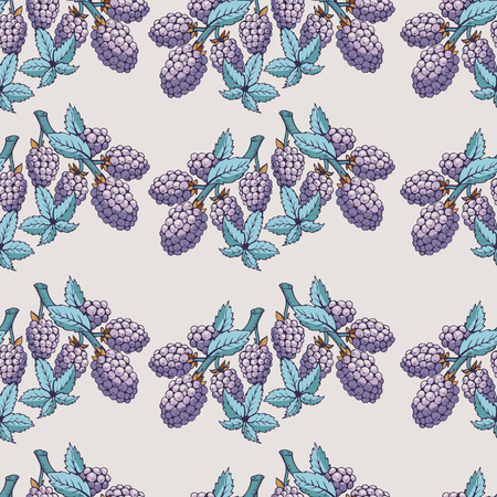 brambleberry: Seamless pattern of blackberry with branch and leaves. Beautiful soft color patterns. The picture can be used on the packaging, printing, wallpaper, case for phone, menu