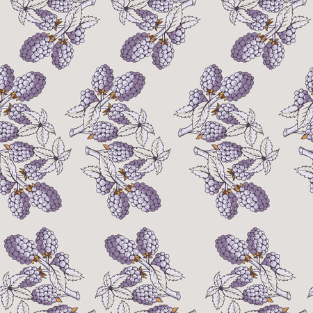 dewberry: Seamless pattern of blackberry with branch and leaves. Beautiful soft color patterns. The picture can be used on the packaging, printing, wallpaper, case for phone, menu