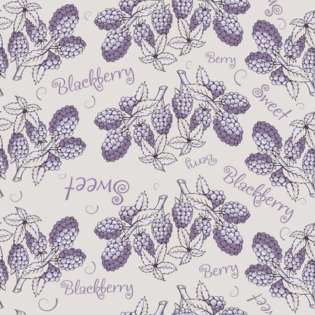 bramble: Seamless pattern of blackberry with branch and leaves. Beautiful soft color patterns. The picture can be used on the packaging, printing, wallpaper, case for phone, menu