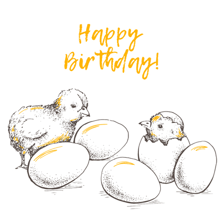 baby sick: Greeting card of chick peeking out of eggs. Happy Birthday. Sketch illustration. Graphics, handmade drawing chick with eggs. Chicken vector image. Vintage engraving style.
