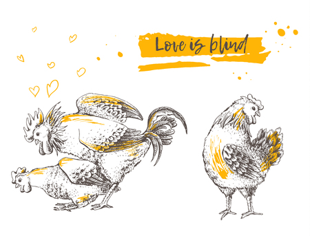 coupling: Mating of a rooster and hen. Brood-hen shyly turned her head. Postcard handmade illustration. It may be used for funny greeting card. Hand drawn picture. Vector illustration for your design. Illustration
