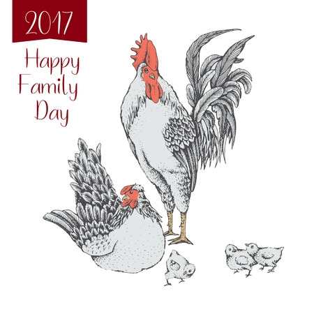 defend: Illustration rooster and hen. Series of farm animals. Graphics, sketch, hand drawing birds family. Rooster fighter and a bully, ready to defend brood and chicken. Vintage engraving style. Family day