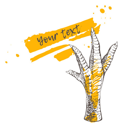 Chicken or turkey foot