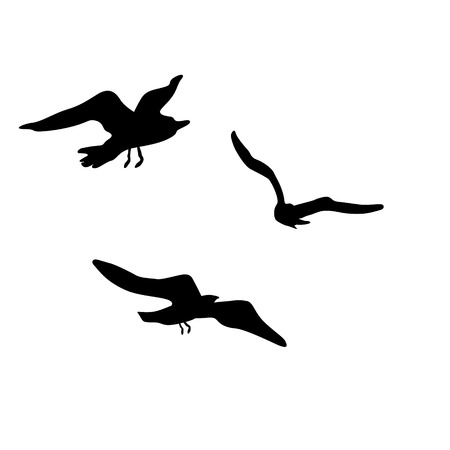 Vector silhouettes of flying seagulls 版權商用圖片