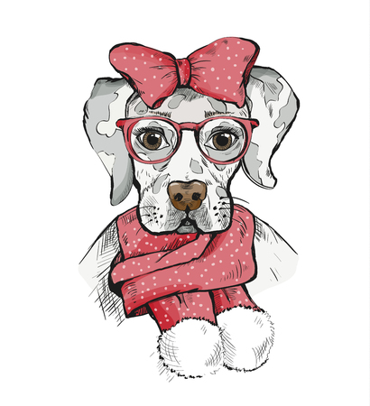 Cute Girl Dog in a winter scarf and red bow on its head. Pedigree dog. Labrador. 向量圖像