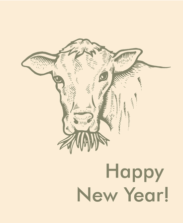 Greeting card of Bull. Simple text Vector illustration. 向量圖像