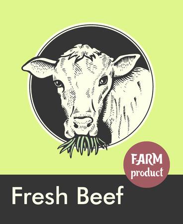 Label of cute Bull Vector illustration.