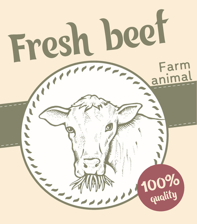 Label of Bull illustration  design