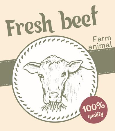 Label of Bull illustration  design
