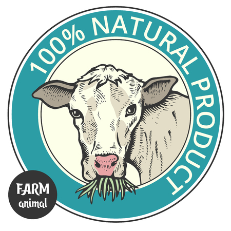 Label of cute Bull or cow , 100% natural 向量圖像