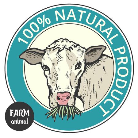 Label of cute Bull or cow , 100% natural Ilustração