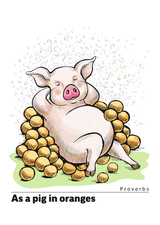 A series of postcards with a piglet. Proverbs and sayings. As a pig in oranges Banco de Imagens