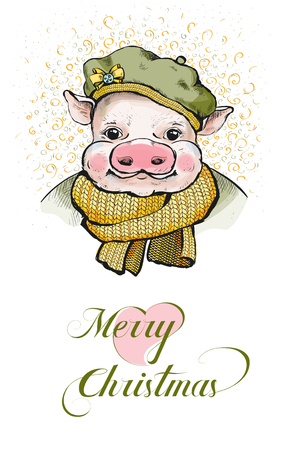 The portrait of a piglet in a round soft beret on its head.