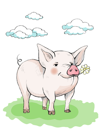 Cute piglet with rosy pink cheeks is standing on the grass. In the mouth eats a flower chamomile.