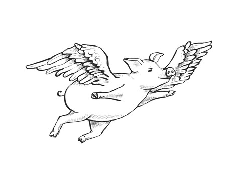 Contour Line Drawing. When pigs fly. A fat piglet is flying among cumulus clouds. He has wings. Hand-drawn illustration. Cartoon. Watercolor style