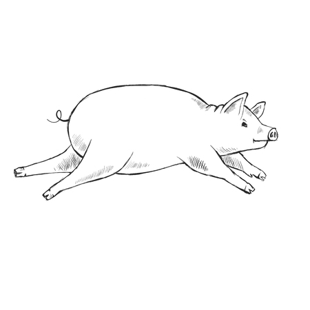 Contour Line Drawing. Coloring for kids. The piggy is running. Hand-drawn. Cartoon.