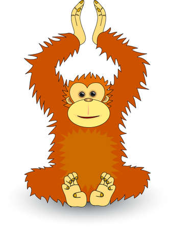 Orangutan Stock Vector - 4598474