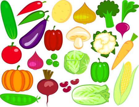 cartoon vegetable: Vegetables