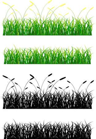 Green grass silhouette Vector