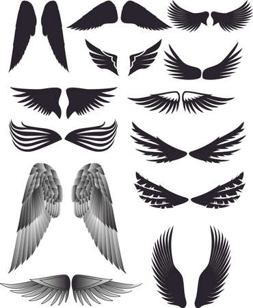 collection of wing silhouette Stock Vector - 4938818