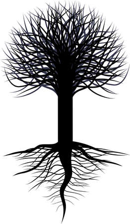 willow: tree silhouette