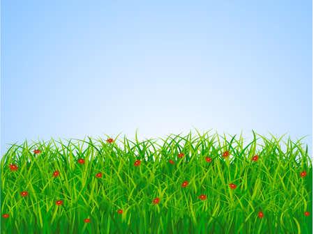 Grass landscape Stock Vector - 5358743