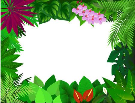 Forest background Illustration