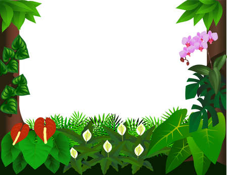 greenery: Forest background Illustration