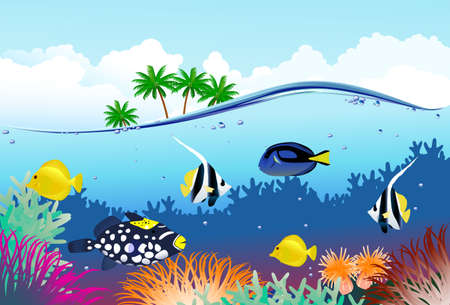 Tropical under water world Stock Vector - 6128773