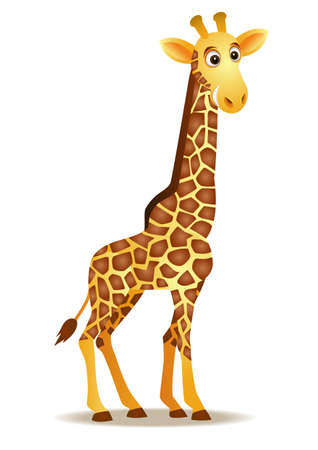 giraffe cartoon: Giraffe isolation Illustration