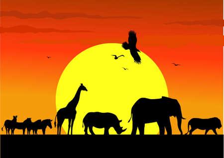Tier Afrika-Parade  Illustration