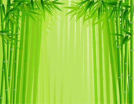 hoog gras: Bamboebos  Stock Illustratie