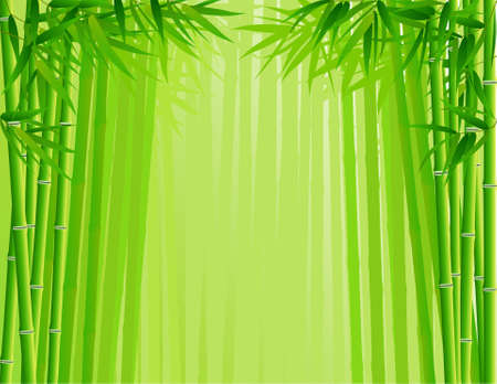Bamboo forest Stock Vector - 6590834