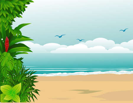 birds of paradise: Tropical beach Illustration