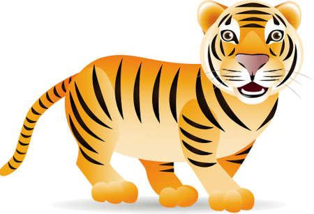 carnivoros: Un tigre cute  Vectores