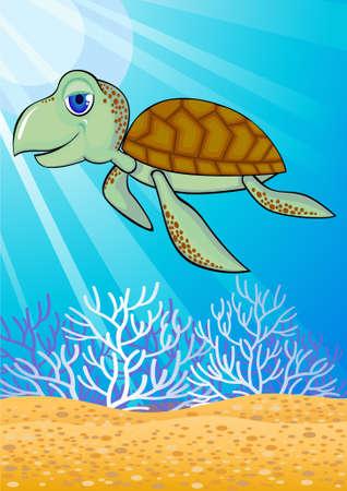 swiming: Cute turtle swiming in the ocean Illustration