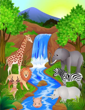beaux paysages: Belle jungle