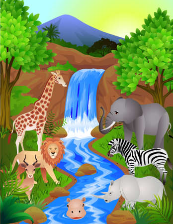 Piękne Dżungla  Ilustracje wektorowe