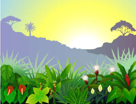 Tropical forest view Vector