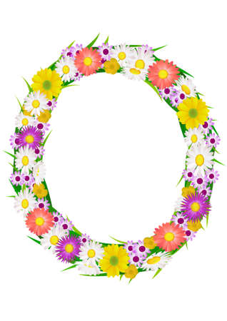 Flower in the circle Vector